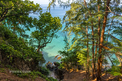 Landscapes of Phuket. Western Coast near Kamala   XOKA7327bs (Phuketian.S) Tags: landscape phuket kamala surin beach forest hill mountain water sea ocean blue azure tree jungle palm relax calm nobody thailand andaman phuketian nature pine wave morning