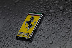 Ferrari - Goodwood Festival of Speed 2019 (E_W_Photo) Tags: ferrari badge prancinghorse rain waterdroplets car goodwoodfestivalofspeed2019 canon 80d 70200mmf4lis