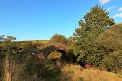 Duck Bridge, Danby (Mike.Dales) Tags: duckbridge danby northyorkshire northyorkmoorsnationalpark landscape england riveresk