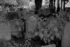 Legion (Tony Tooth) Tags: nikon d600 tamron 2470mm churchyard cemetery gravestones bw blackandwhite monochrome youlgrave youlgreave derbyshire england spooky ghostly