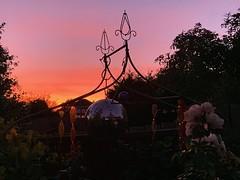 September sunset (markshephard800) Tags: sunset garden jardin jardim tuin mirrorball discoball garten giardino trees art