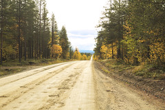 Finnish autumn (kalsink) Tags: finland finnish lapland lappi autumn gravel road canon6d