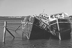 the graveyard (Paul J's) Tags: landscape coastal southland bluff shipsgraveyard fishingboat fishingboats