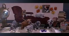 Chaos in the living room (nannja.panana) Tags: nannjapanana parkplace rezzroom zerkalo fapple