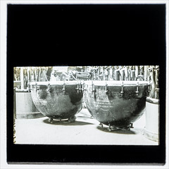 Kettledrums - undated (Paul Parkinson LRPS CPAGB (parkylondon)) Tags: 2019 aperturewoolwich glassplates may wps woolwichps