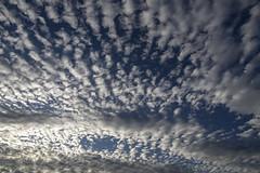 Nubes de amanecer (José M. Arboleda) Tags: amanecer salidadelsol nube cielo bruma puracé popayán colombia canon eosrp rf24240mmf463isusm josémarboledac