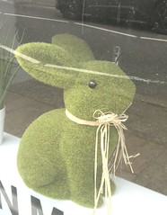 Environmentally friendly Bunny ! (AndrewHA's) Tags: hertfordshire bishop's stortford rabbit advert shot window display