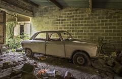_DSC6273-HDR (Foto-Runner) Tags: urbex lost decay abandonné voitures car épaves peugot 204