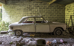 _DSC6270-HDR (Foto-Runner) Tags: urbex lost decay abandonné voitures car épaves peugot 204