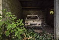_DSC6289 (Foto-Runner) Tags: urbex lost decay abandonné voitures car épaves peugot 204