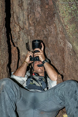 DSC9460 Fotografiando murciélagos dentro de un árbol hueco, Reserva Natural Tangkoko-Batuangas Dua Saudara, Isla de Célebes, Sulawesi, Indonesia (Ramón Muñoz - Fotografía) Tags: indonesia indonesian fauna animales animals tangkokobatuangas dua saudara reserva natural parque nacional park national reserve