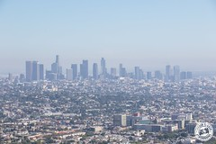 Los Angeles Skyline.. (Lauren Tucker Photography) Tags: america california griffithobservatory holiday hollywood landscape losangeles usa view canon slr camera markii 7d 18300mm sigma copyright ©laurentuckerphotography photography photographer photograph photo image pic picture allrightsreserved 2019 colour wild wildlife nature mammal bird closeup summer us unitedstates travel