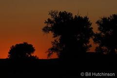 September 22, 2019 - The golden glow before sunrise. (Bill Hutchinson)
