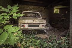 _DSC6292 (Foto-Runner) Tags: urbex lost decay abandonné voitures car épaves peugot 204