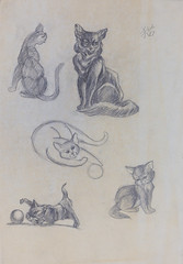 Sketches by Mei - Cats (Chris-Creations) Tags: 20190814022 art drawing cats cat sketch pencil