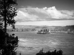 Me gusta estar de nuevo acá (.KiLTЯo.) Tags: kiltro cl chile cutipay valdivia río river nature landscape trees water island isla clouds sky