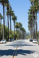 Rodeo Drive.. (Lauren Tucker Photography) Tags: america beverlyhills california holiday landscape losangeles rodeodrive usa view canon slr camera markii 7d 18300mm sigma copyright ©laurentuckerphotography photography photographer photograph photo image pic picture allrightsreserved 2019 colour wild wildlife nature mammal bird closeup summer us unitedstates travel