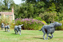 Hoveton Hounds (mr.mellow) Tags: garden hounds artworks