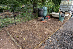 The storage area for water butts and wheelbarrows, laid with woodchip at the Thrive & Grow Poltimore Session No. 27 - 23rd September 2019 (Meridian Raw CIC) Tags: meridianraw meridianrawcic community communityproject thrivegrow horticulturalproject horticulture growing gardening horticulturaltherapy communitygardening vegetablegarden flowergarden empowerment gadeningtherapy sharedvegetablegarden vegetables raisedbeds poltimore devon england