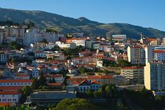 Covilhã, late afternoon (lebre.jaime) Tags: portugal beira covilhã lateafternoon digital fullframe fx ff nikon d600 voigtländer nokton 58f14sliis nokton5814sliis affinity affinityphoto