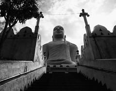 (steveannovazzi) Tags: srilanka buddha kandy bw blackandwhite