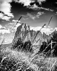 High Grass... (Ody on the mount) Tags: anlässe berge blackwhite dolomiten em5ii fototour gipfel himmel landschaft langkofel omd olympus südtirol urlaub wolken bw blackandwhite clouds landscape miraclesofcreation monochrome mountains peaks sw schwarzweis sky