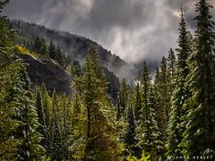 Trail Head View (James Neeley) Tags: tetoncanyon grandtetons tetons westside landscape mountains jamesneeley