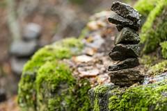 Holzbachschlucht Geopark (koru02) Tags: holzbachschlucht geopark westerwald lahn taunus nikon d7200 herbst steine wasser laub