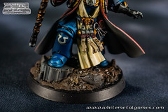 Chief Librarian Tigurius 0491-06 (whitemetalgames.com) Tags: whitemetalgames warhammer40k warhammer 40k warhammer40000 wh40k paintingwarhammer gamesworkshop games workshop citadel wmg white metal painting painted paint commission commissions service services svc raleigh knightdale northcarolina north carolina nc hobby hobbyist hobbies mini miniature minis miniatures tabletop rpg roleplayinggame rng warmongers wargamer warmonger wargamers tabletopwargaming tabletoprpg chief librarian varro tigurius chieflibrarianvarrotigurius