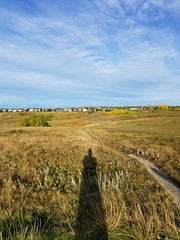 20190923_085125 (catfishkempster) Tags: walking dogs calgary alberta nosehillpark fitness nature naturephotography