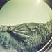 Hausmattbrücke
