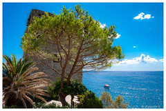 Monterosso (Pascale_seg) Tags: riomaggiore liguria italie italia ligure mer mare 5terre cinqueterre été summer estate nikon tout torre palmier pin