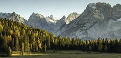 Dolomites mountain peaks & autumn pines (michael301187) Tags: dolomite peaks mountain national park maddalena sangiovanni landmark outdoor landscape treescape italian europe worldheritage sky still view travel autumn tree italy pine ranui canon eos adventure sassolungo catinaccio pani canazei pordoi