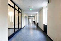 P9990462 ash (Ulf Ostländer) Tags: tellkampfschule hannover altenbekenerdamm