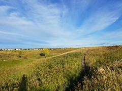 20190923_085551 (catfishkempster) Tags: walking dogs calgary alberta nosehillpark fitness nature naturephotography