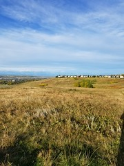 20190923_085128 (catfishkempster) Tags: walking dogs calgary alberta nosehillpark fitness nature naturephotography
