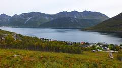 DSCF1267 (skuppens) Tags: lapland travel travelphotography landscape norway