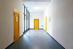 P9990477 ash (Ulf Ostländer) Tags: tellkampfschule hannover altenbekenerdamm