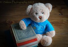 Learning Things (HTBT) (13skies) Tags: bear teddybear rama happyteddybeartuesday learning book smart reading cute blue sit sitting waiting htbt sonya57