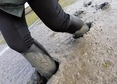 Aigle Start riding boots at a nice depth (essex_mud_explorer) Tags: aiglestart ridingboots aigle rubberboots rubberlaarzen reitstiefel bottesdéquitation muddy mud mudflats bootsinmud ridingbootsinmud