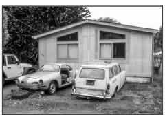 VW Projects (NoJuan) Tags: tukwila seattle washingtonstate microfourthirds micro43 mirrorless m43 mft gx85 panasonicgx85 918mm olympus918mm volkswagen vw bw blackwhite blackandwhite digitalbw