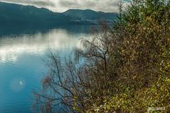 "Foyers, to the south, across Loch Ness, in very early Spring. (Scotland by NJC.) Tags: lakes lochs reservoirs waters meres tarns ponds pool lagoon lago 湖 meer järvi lac see λίμνη 호수 innsjø jezioro озеро hill تَلّ colina 小山 brdo kopec bakke forhøjning landskabet heuvel mäki colline hügel λόφοσ collina 丘 언덕 ås wzgórze deal холм backe เขาเตี้ยๆ tepe coğrafya пагорб đồi mist haze fog vapour shrouded veiled ضَبَابٌ névoa 薄雾 izmaglica neblina usva brume ""leichter nebel"" καταχνιά foschia もや 안개 tåke mgiełka lochness foyers scotland"