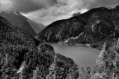 Views Seen at the End of the Thunder Knob Trail (Black & White, North Cascades National Park Service Complex) (thor_mark ) Tags: anseladamslookfromcapturenx2 azimuth320 blackwhite capturenx2edited cascaderange centralnorthcascades cloudsaroundmountainpeaks cloudsaroundmountains cloudy colorefexpro davispeak day8 diablolake eldoradomassif evergreentrees evergreens hiketothunderknob hillsideoftrees lake landscape lookingnw mountainpeak mountains mountainsindistance mountainsoffindistance mountainside nature nikond800e northcascades northcascadesnationalparkcomplex northcascadesnationalparkservicecomplex outside overcast pacificranges picketrange portfolio project365 ridge ridges rollinghillsides rosslakenationalrecreationarea skagitrange sourdoughmountain sunny talltrees thunderknob thunderknobtrail transmissionline transmissionlinetowers transmissionlines transmissiontowers trees triptonorthcascadesandwashington rosslakenationalrecreationar washington unitedstates