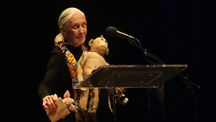 Reasons For Hope, An Evening With Dr. Jane Goodall - Valerie Jane Morris-Goodall (Dame Jane Morris Goodall DBE) (Peter Hutchins) Tags: reasonsforhope aneveningwithdrjanegoodall theanthem washington dc reasons for hope an evening with dr jane goodall the anthem dame morris damejanemorrisgoodall van lawickgoodall baroness baronessjanevanlawickgoodall valerie morrisgoodall valeriejanemorrisgoodall