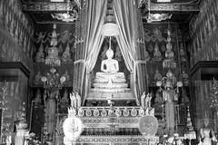 L1009960-2 (nae2409) Tags: buddha image buddhism temple religion faith bangkok thailand leica 50mm summilux