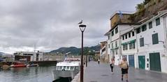 Viento sur. Desde el puerto de Donostia. (eitb.eus) Tags: eitbcom 32961 g154801 tiemponaturaleza tiempon2019 paisajes gipuzkoa donostiasansebastian jonhernandezutrera