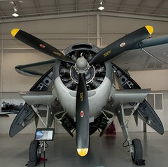 "Grumman TBM-3E Avenger 2 • <a style=""font-size:0.8em;"" href=""http://www.flickr.com/photos/81723459@N04/48786404026/"" target=""_blank"">View on Flickr</a>"