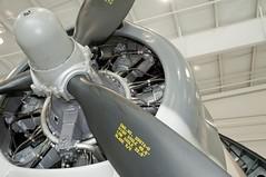 "Grumman TBM-3E Avenger 5 • <a style=""font-size:0.8em;"" href=""http://www.flickr.com/photos/81723459@N04/48786549332/"" target=""_blank"">View on Flickr</a>"