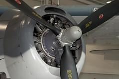 "Grumman TBM-3E Avenger 3 • <a style=""font-size:0.8em;"" href=""http://www.flickr.com/photos/81723459@N04/48786552322/"" target=""_blank"">View on Flickr</a>"