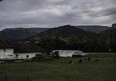 caserio que no le falta de nada (eitb.eus) Tags: eitbcom 16540 g1 tiemponaturaleza tiempon2019 paisajes alava amurrio andoniaza